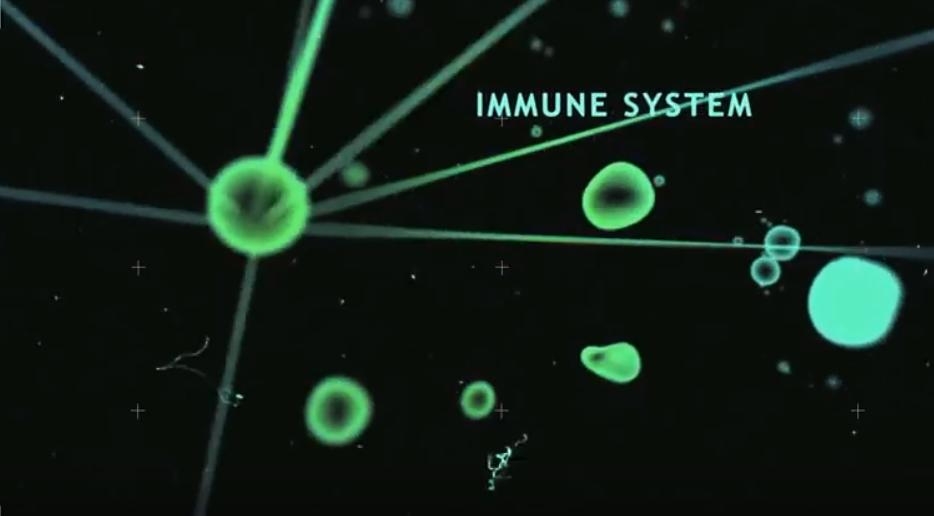 Vrije Radicalen zijn schadelijk voor cellen - zenenzin